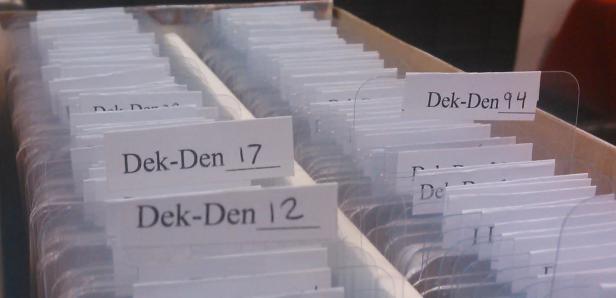 dek-den-dividers-2