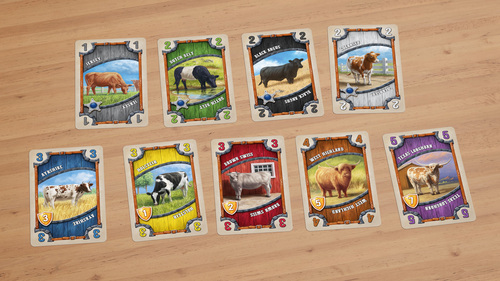 great-western-trail-cow-types