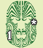 Maori Tohunga
